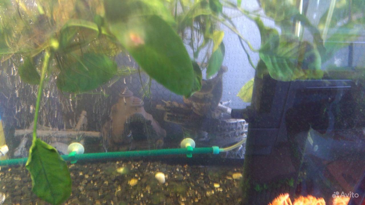 Продам аквариум 70л