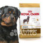 Royal Canin для ротвейлера породный корм 17 кг