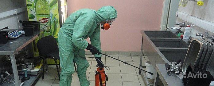 Дезинсекция, Уничтожение клопов и тараканов купить на Вуёк.ру - фотография № 2