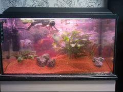 Продаю аквариум с рыбками