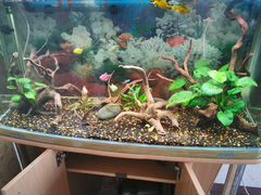 Украшение для аквариума, акариум Jebo 220л