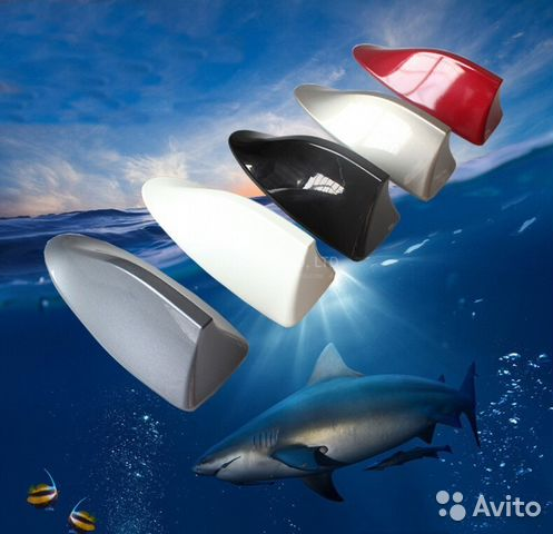 антенна на ниссан х трейл т32 акулий плавник руководителю, Коррекционное образование