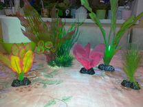 Аквариумные декоративные растения