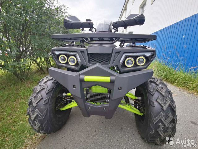 Квадроцикл promax wild 300 LUX  89222501200 купить 6