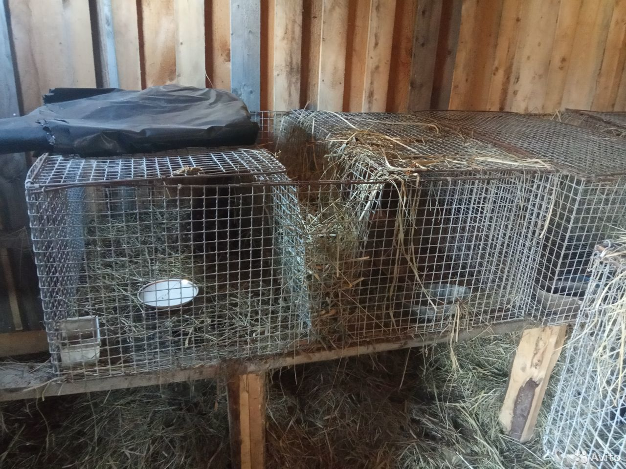 Клетки для кроликов  89206432404 купить 1